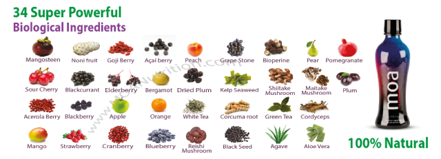 MOA-Nutrition-Ingredients